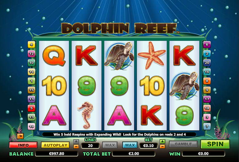 Dolphin Reef 8043