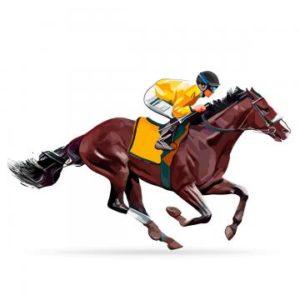 Horse Racing Betting 25983