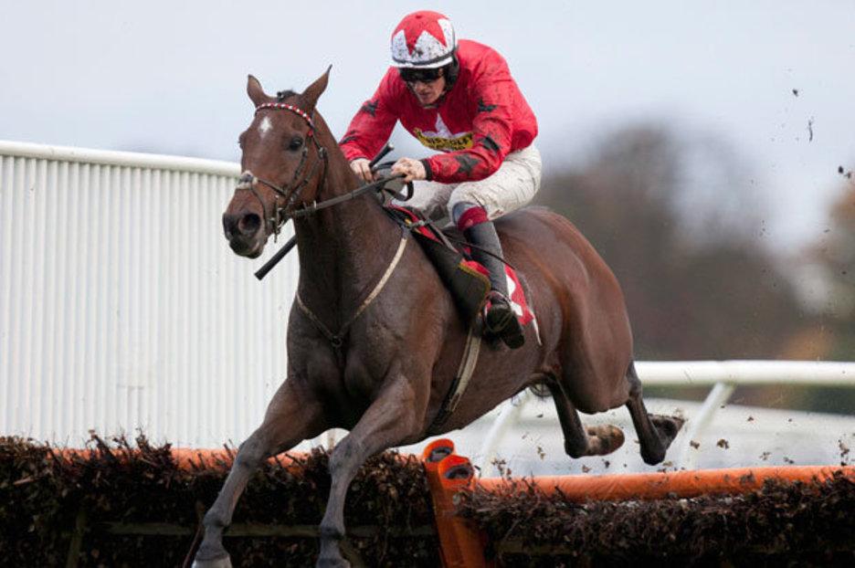 Horse Racing 28912