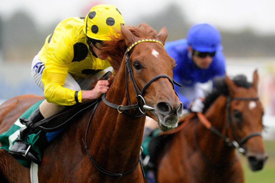 Horse Racing 71515